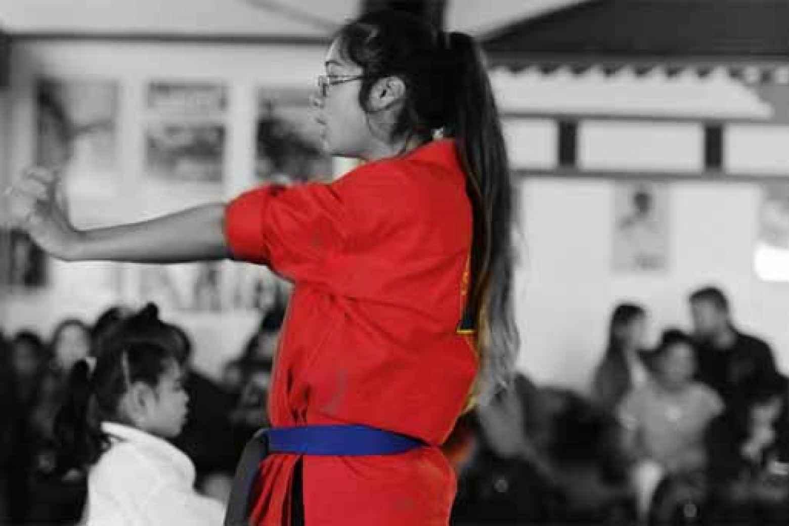 Intermediate Karate (Forms and Self- Defense)