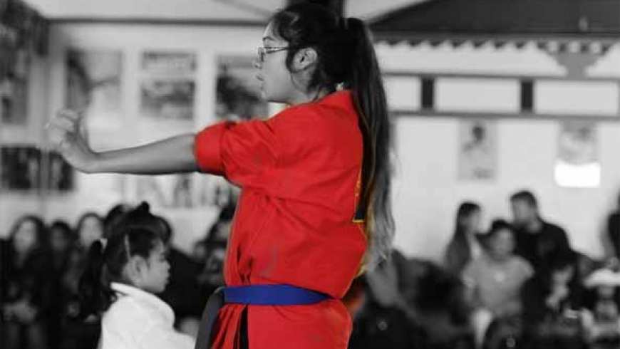 Intermediate Karate (Forms and Self- Defense)