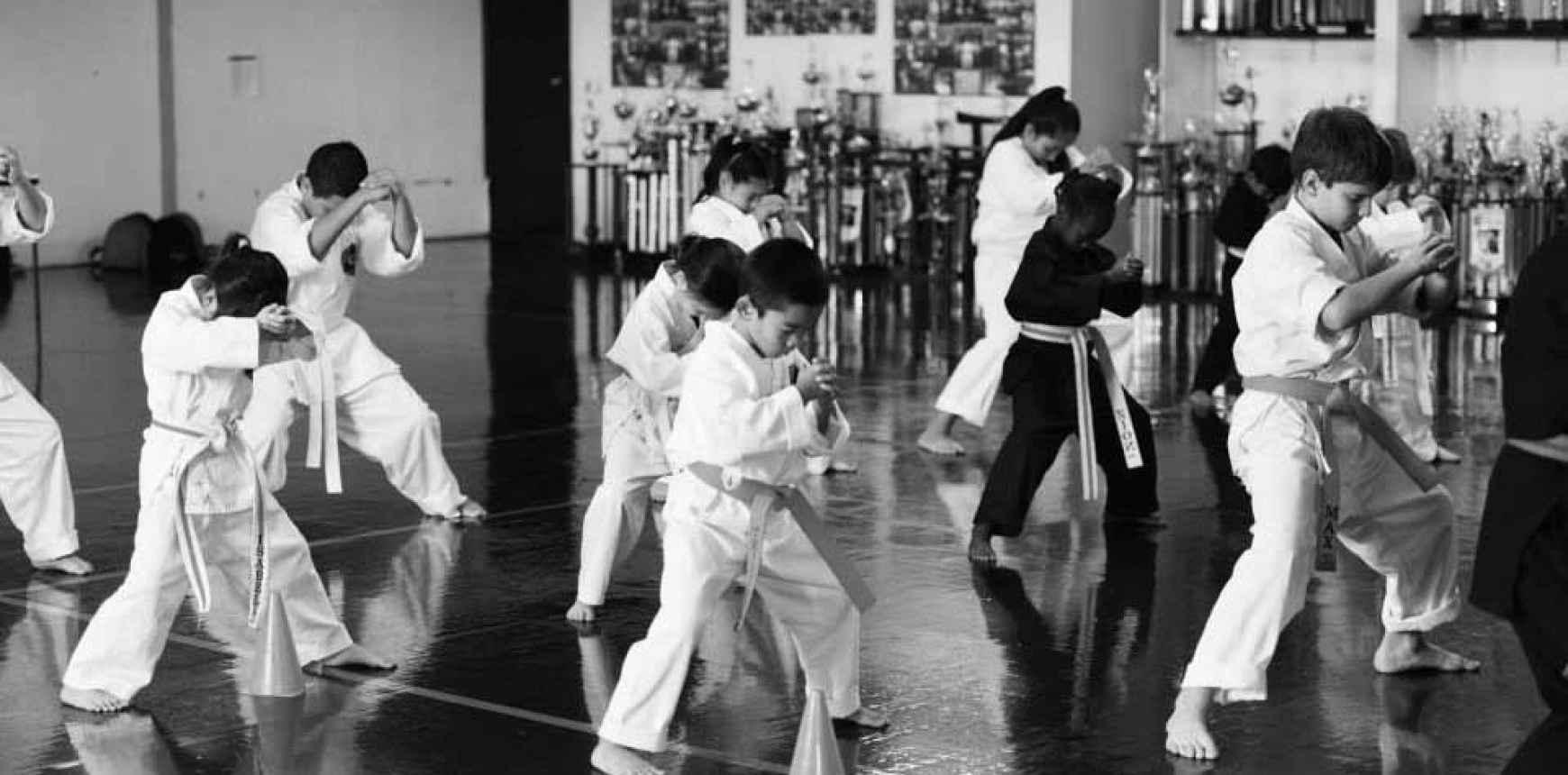 Lamas Karate Student Creed