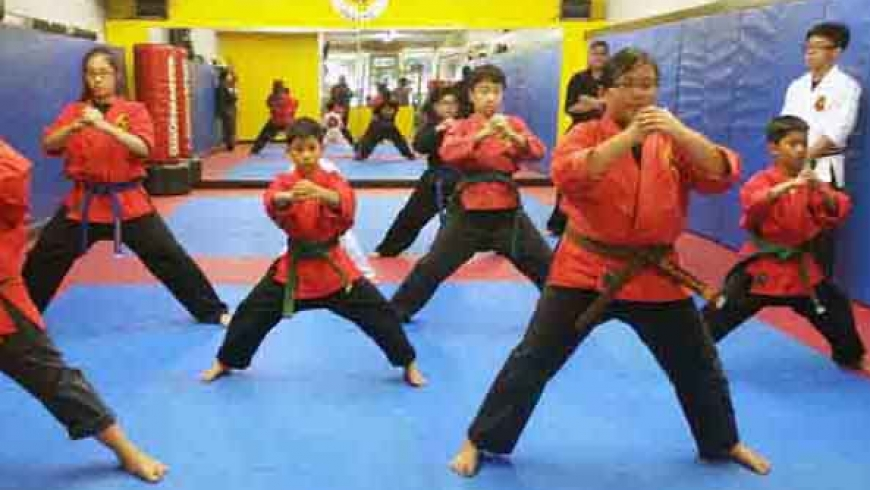 Advanced Karate (Forms and Self Defense)